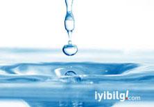 İnsan vücudu için suyun önemi